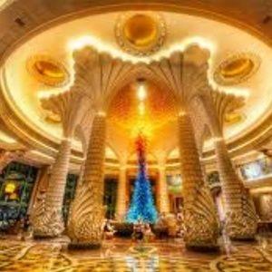 """The Palm"" in Dubai/Night"
